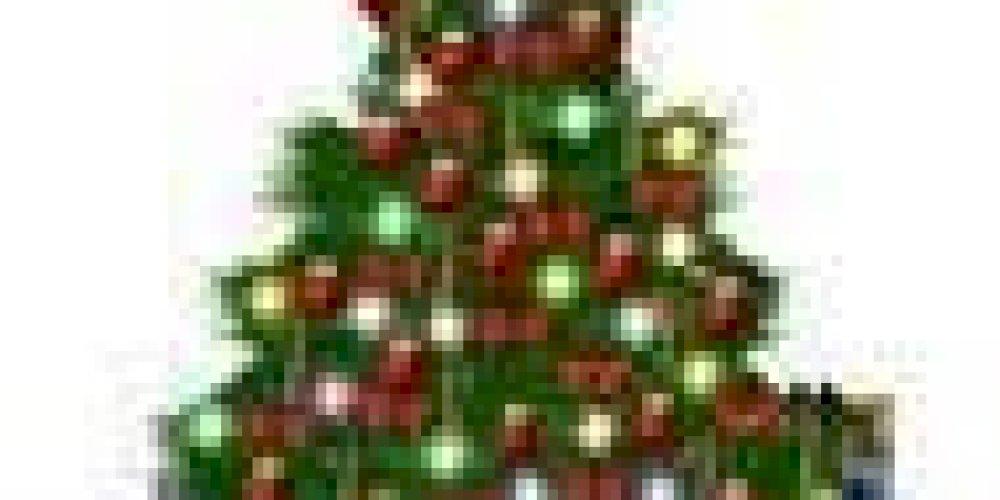 Vánoční provoz 2014