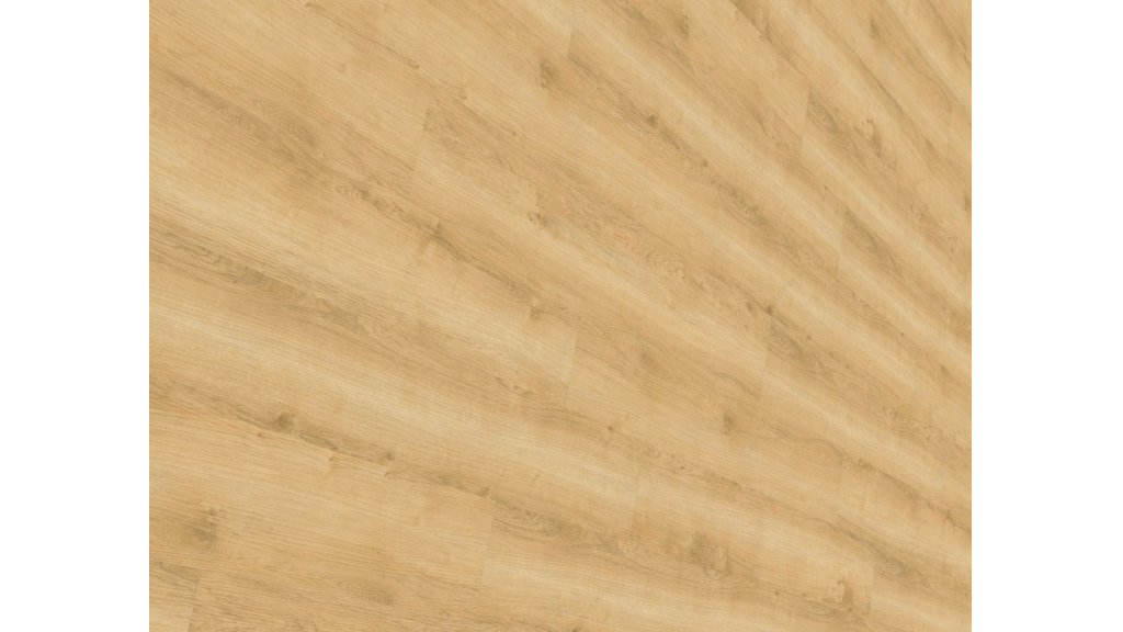 Vinylová podlaha lepená Wineo DESIGNline 800 Wood Wheat Golden Oak 0